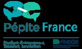 pepite-france-transparent